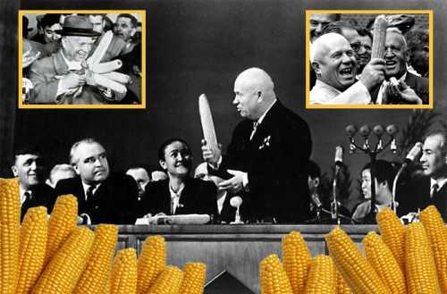 кукурузная мука: необычные способы ее применения