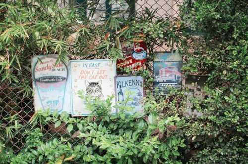 книжный форум во львове: новый бегбедер и ночь с андруховичем